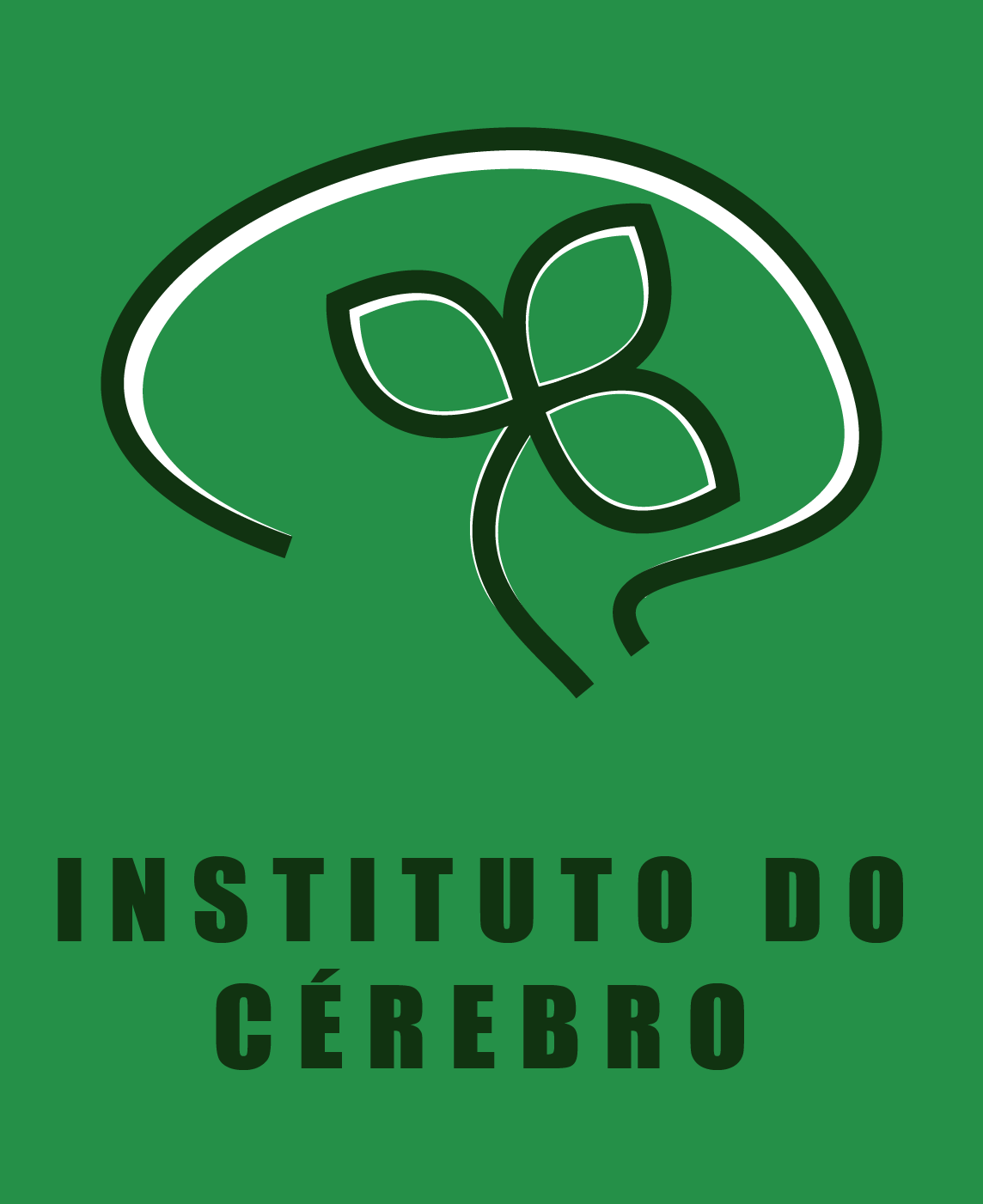 Instituto do Cérebro